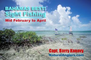 Bahamas bonefish tarpon permit fishing trip